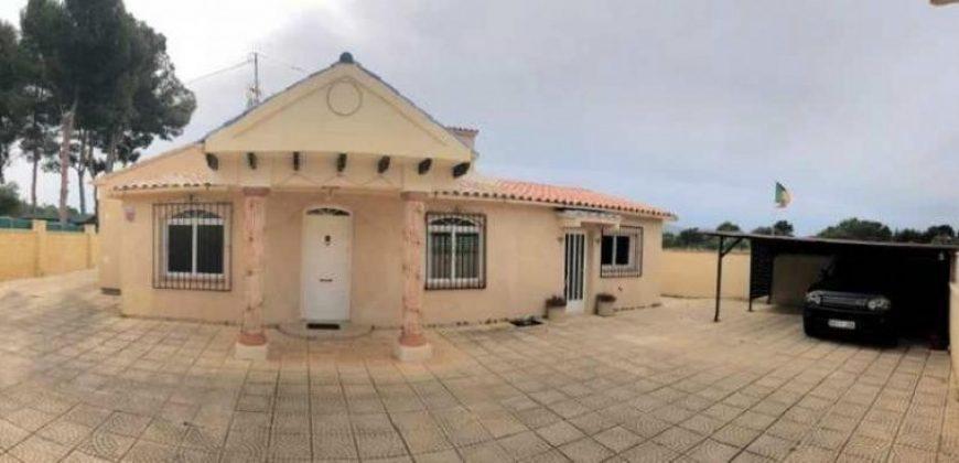 Detached Villa
